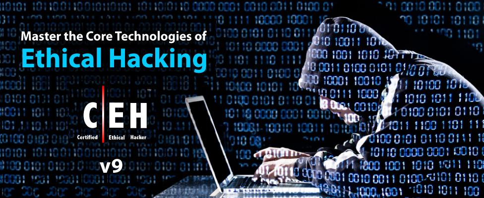 certified ethical hacker study guide pdf download