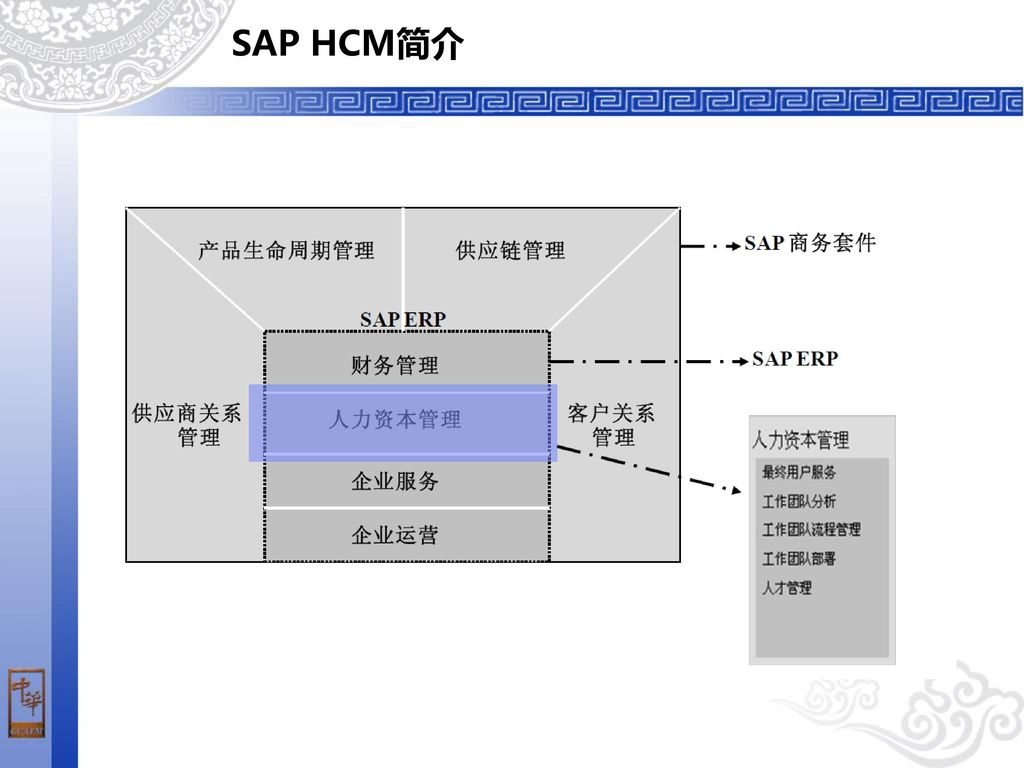 sap hcm pdf free download