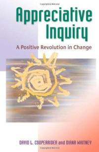 appreciative inquiry a positive revolution in change pdf