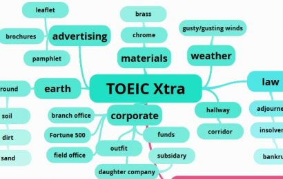 toeic reading comprehension test pdf