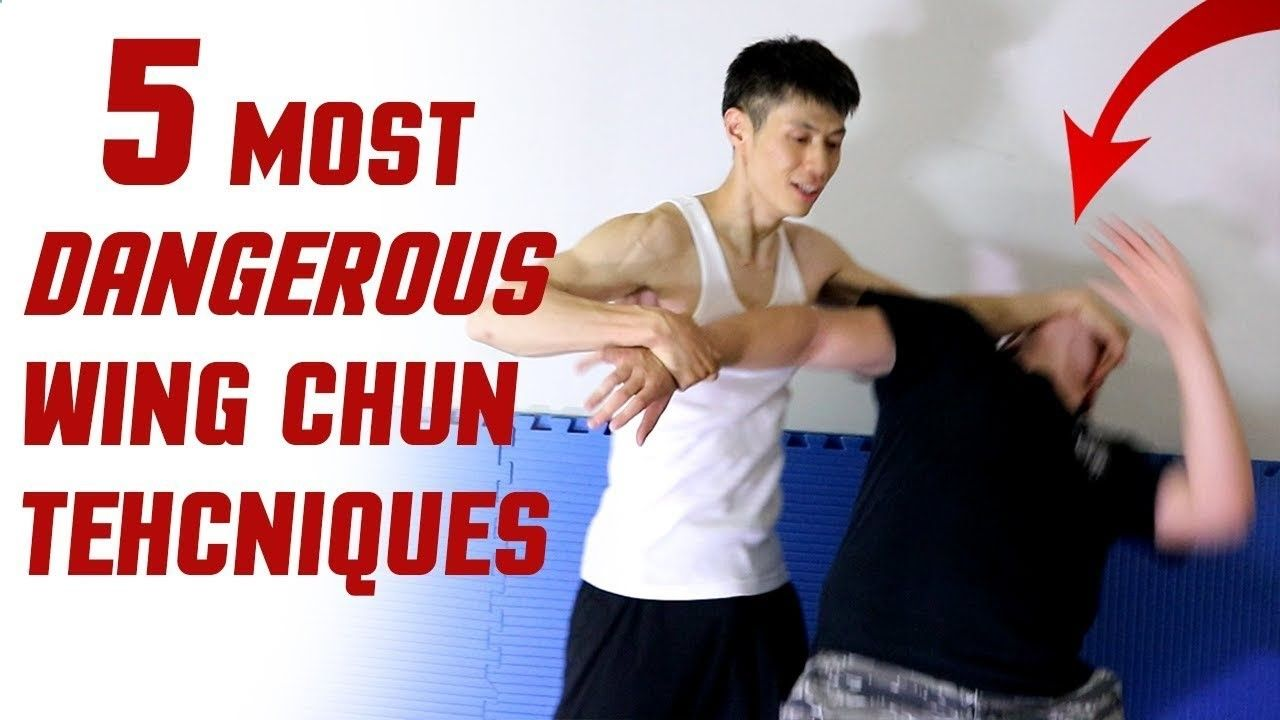 wing chun basics movements pdf
