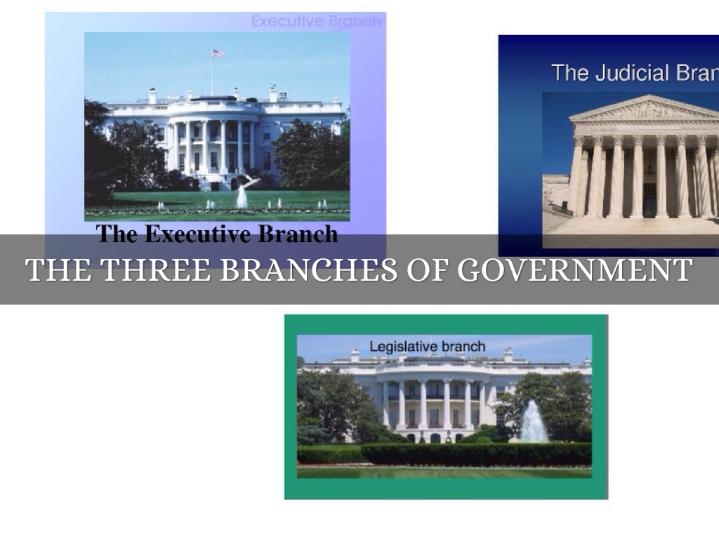 3 branches of government pdf