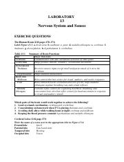 communication system lab manual pdf