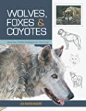 wolves coyotes and foxes wildlife painting basics pdf